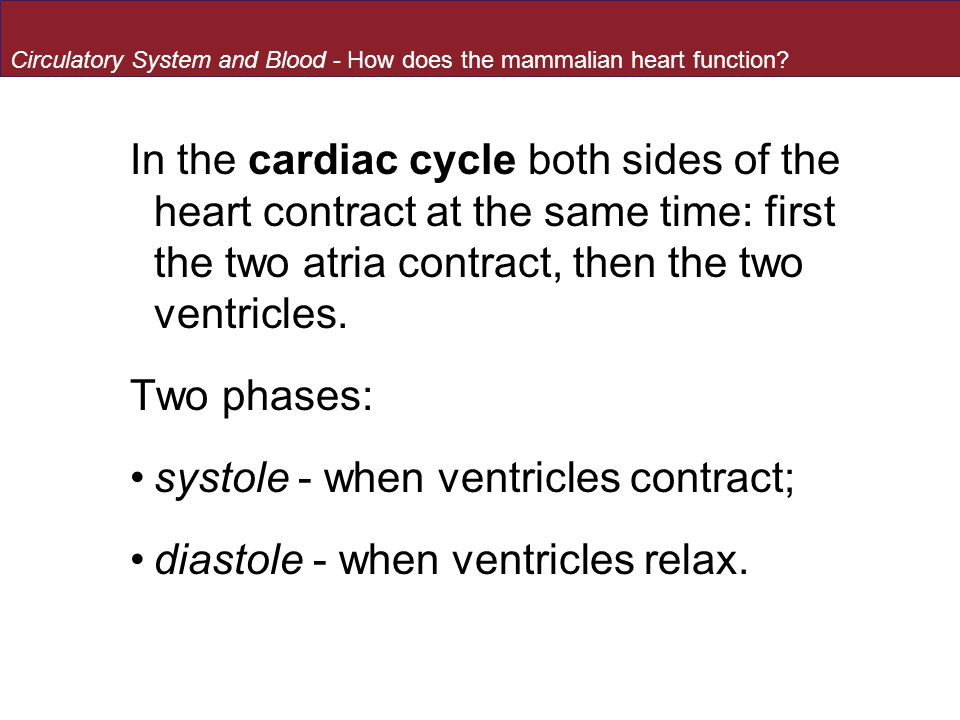 systole - when ventricles contract; diastole - when ventricles relax.