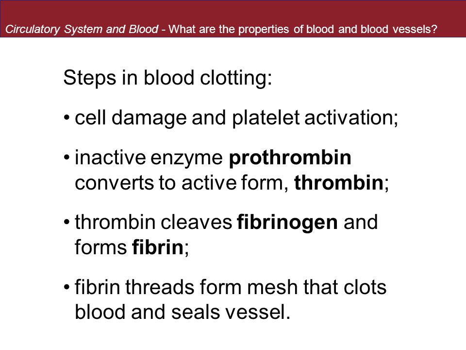 Steps in blood clotting: cell damage and platelet activation;