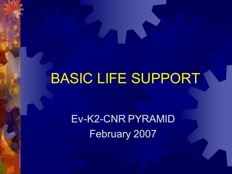 Ev-K2-CNR PYRAMID February 2007