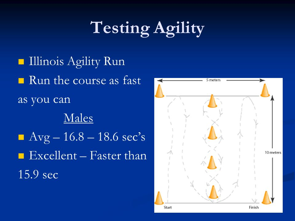 Testing Agility Illinois Agility Run Run the course as fast as you can