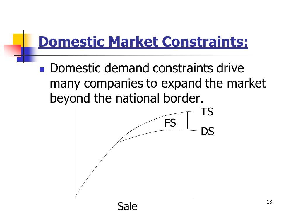 Domestic Market Constraints: