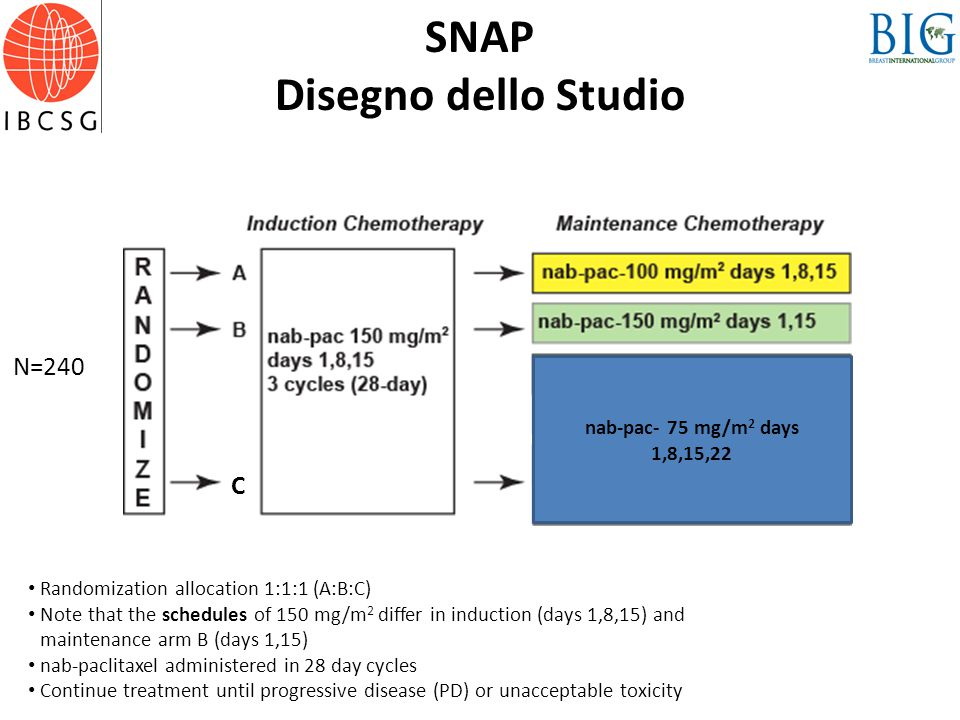 SNAP Disegno dello Studio