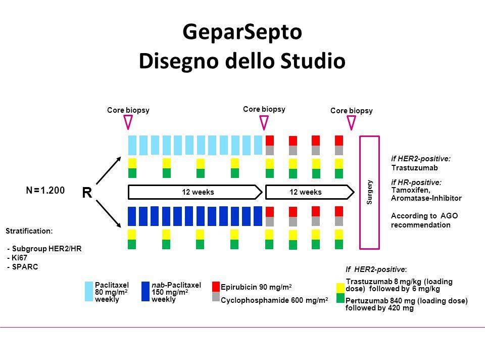 GeparSepto Disegno dello Studio