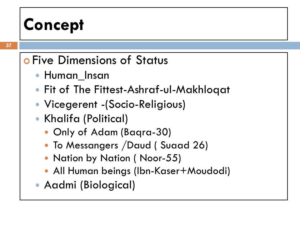 Concept Five Dimensions of Status Human_Insan