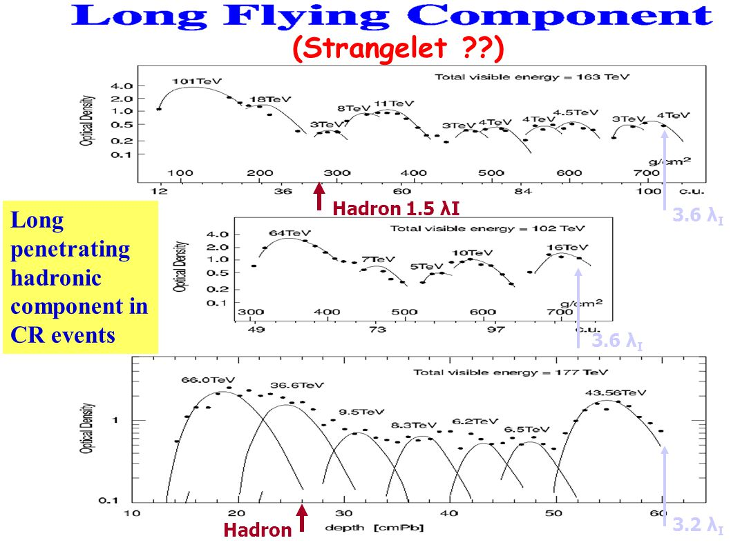 (Strangelet ) Long penetrating hadronic component in CR events