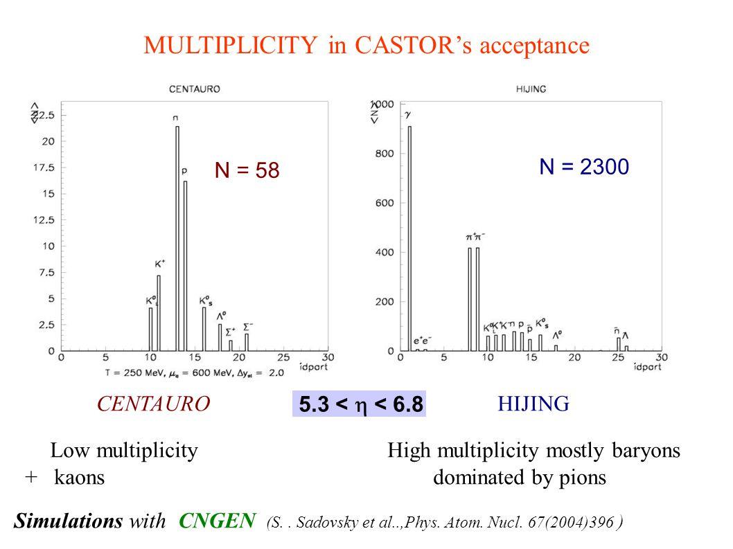 MULTIPLICITY in CASTOR's acceptance
