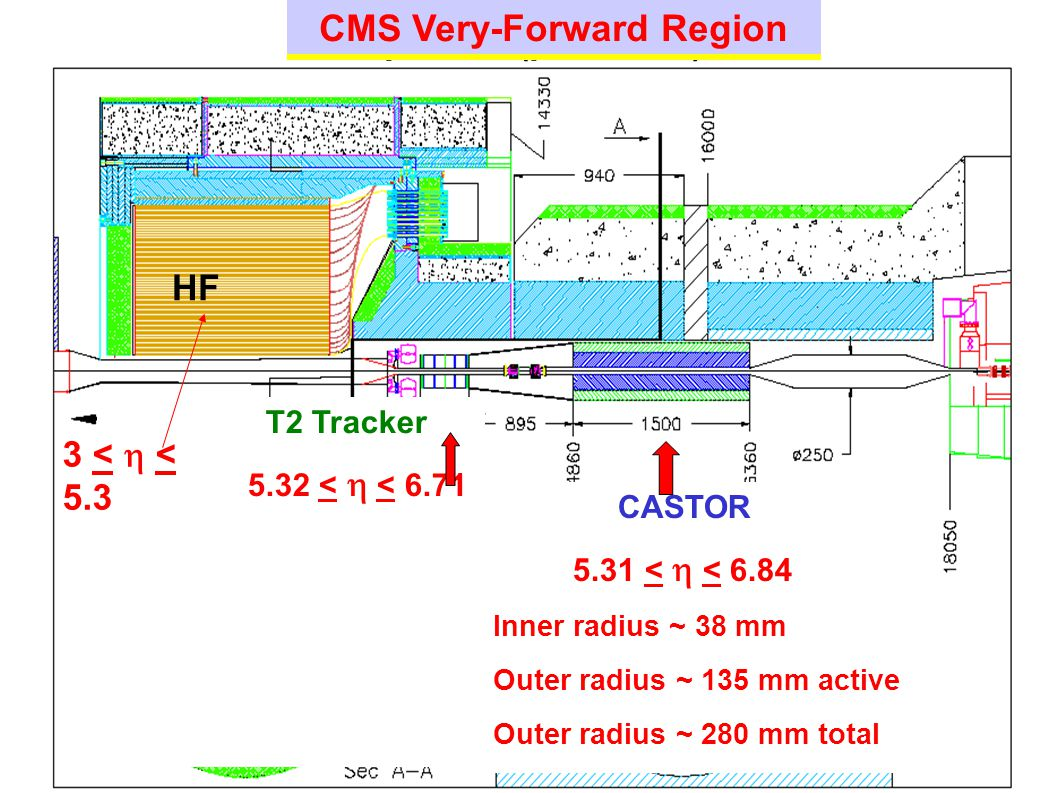 CMS Very-Forward Region