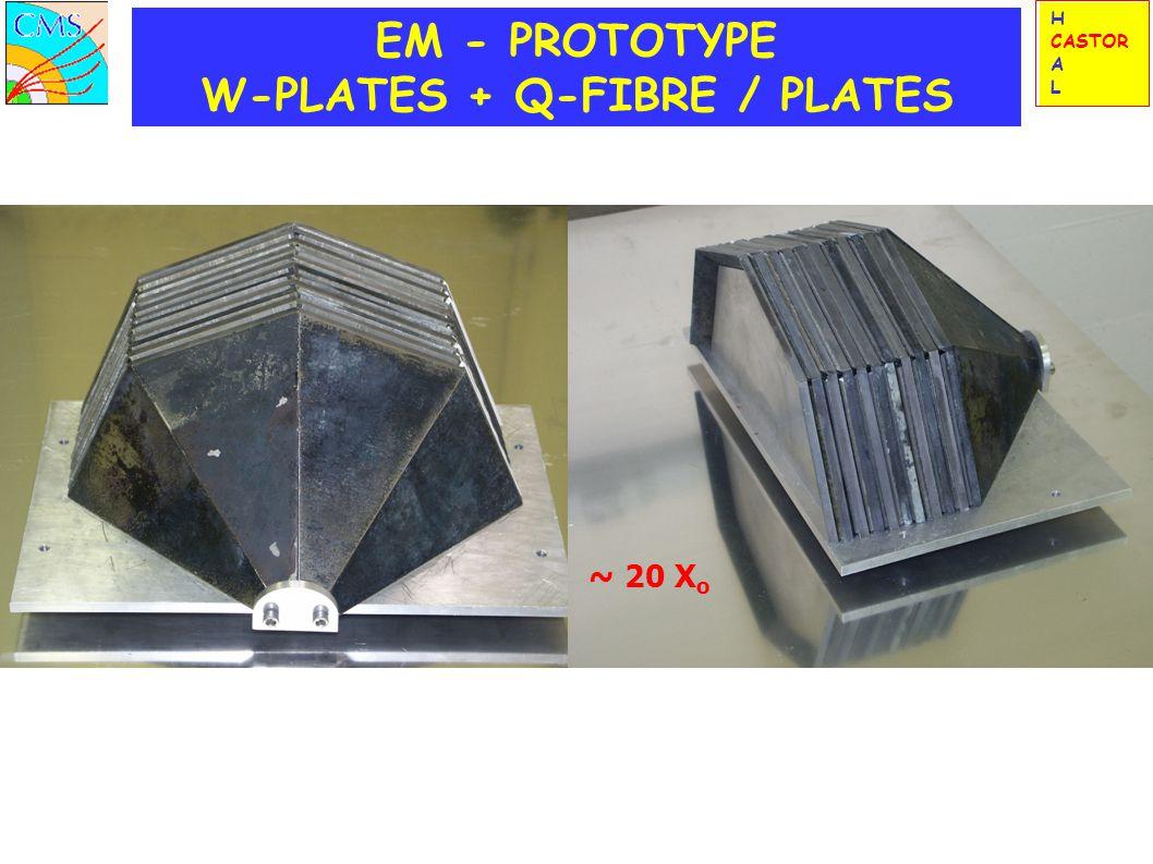 EM - PROTOTYPE W-PLATES + Q-FIBRE / PLATES