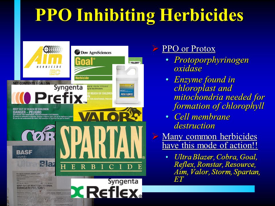PPO Inhibiting Herbicides