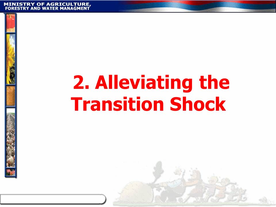 2. Alleviating the Transition Shock