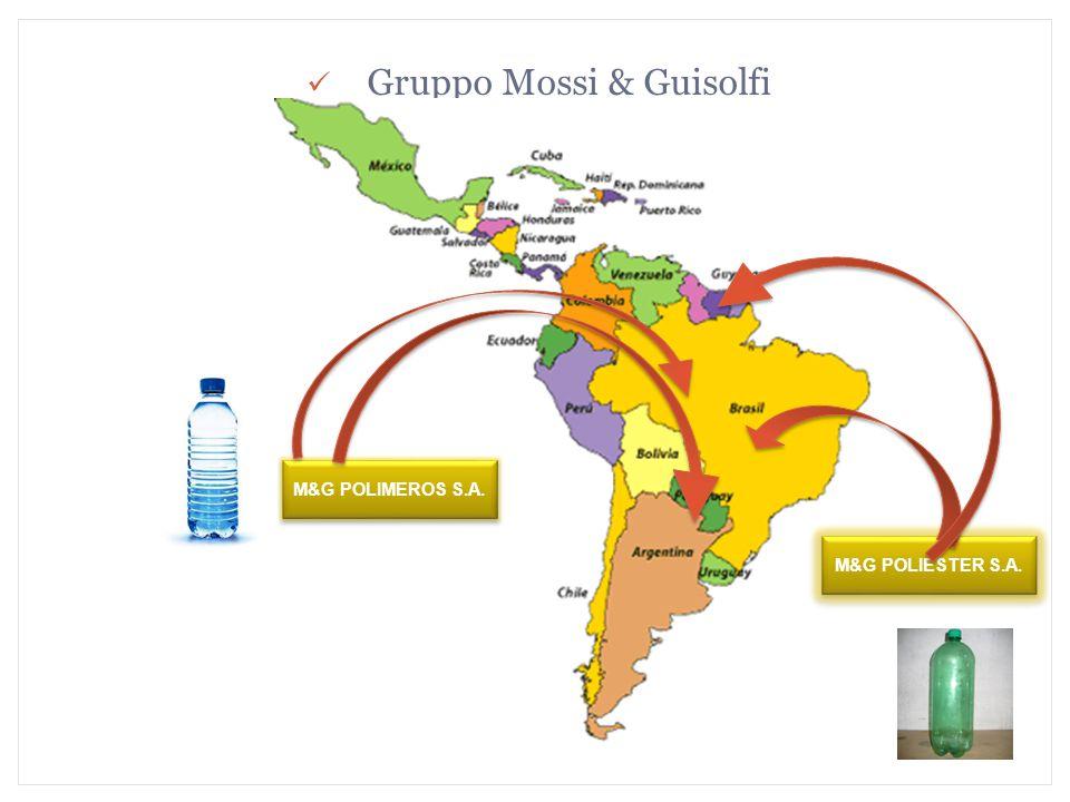 Gruppo Mossi & Guisolfi