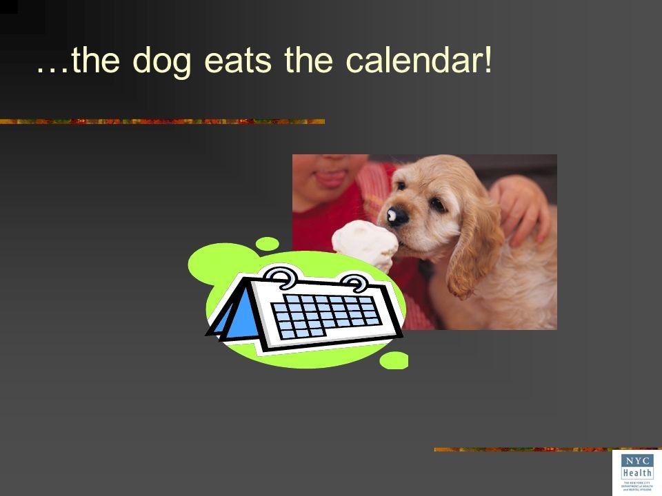 …the dog eats the calendar!