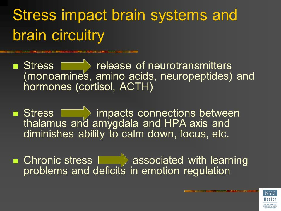 Stress impact brain systems and brain circuitry