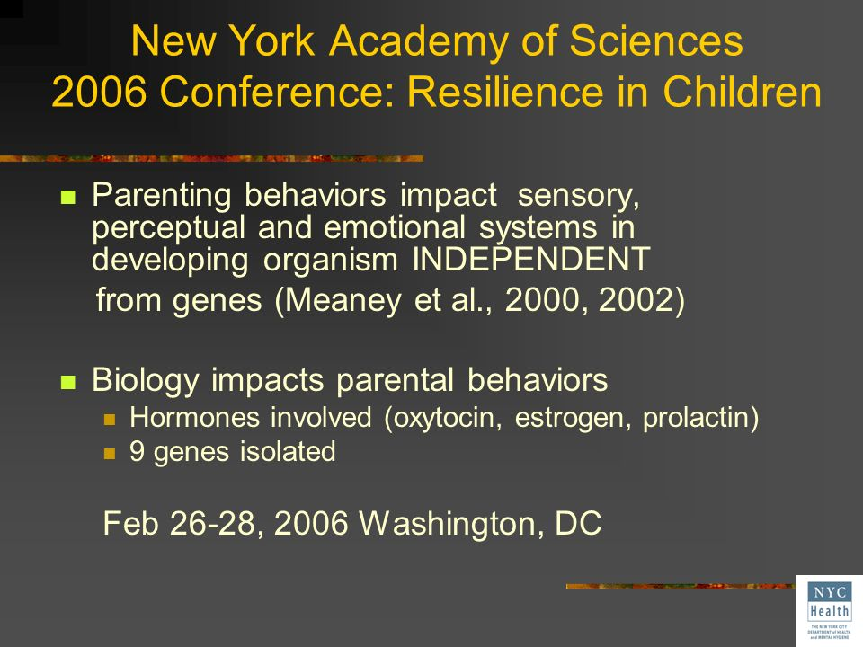 New York Academy of Sciences 2006 Conference: Resilience in Children
