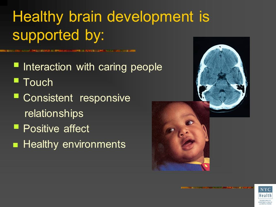 Healthy brain development is supported by: