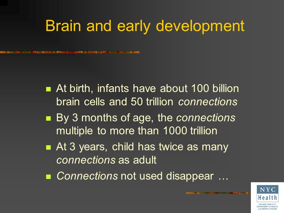 Brain and early development