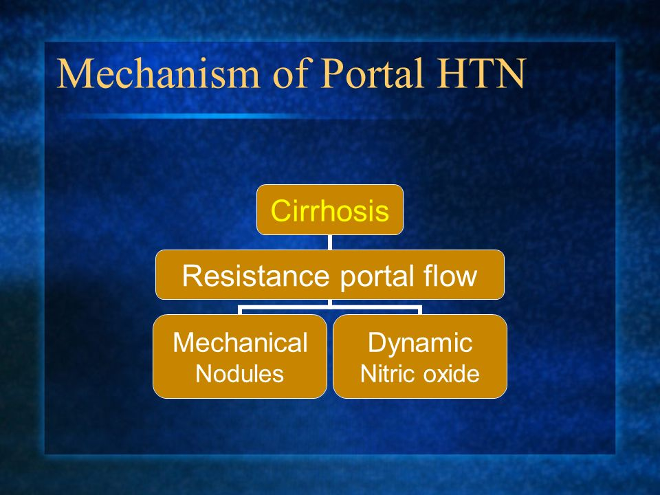Mechanism of Portal HTN