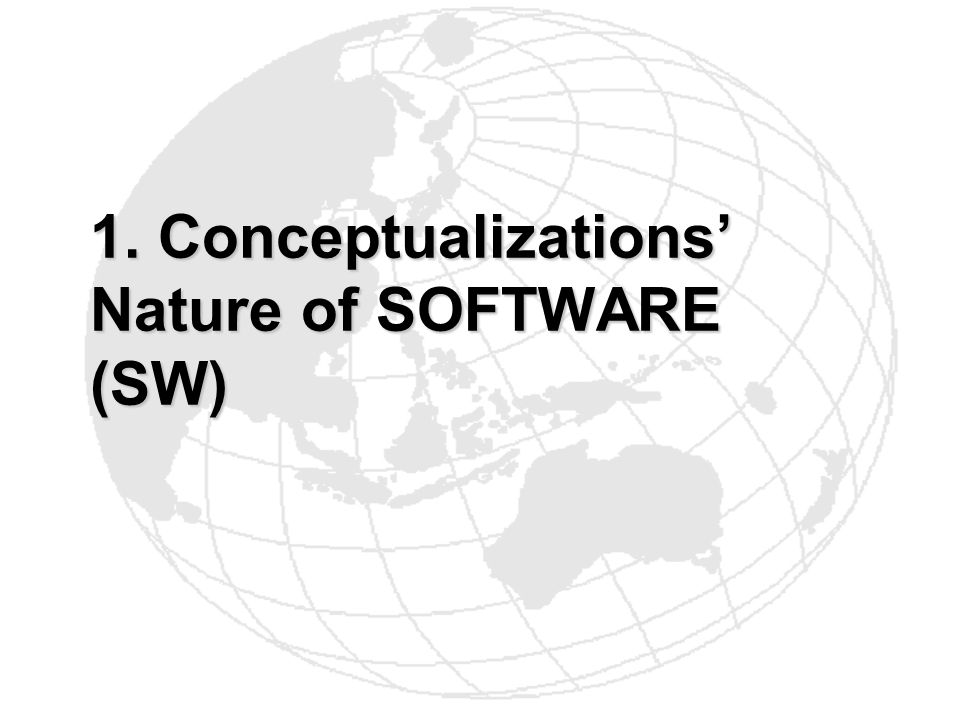 1. Conceptualizations' Nature of SOFTWARE (SW)
