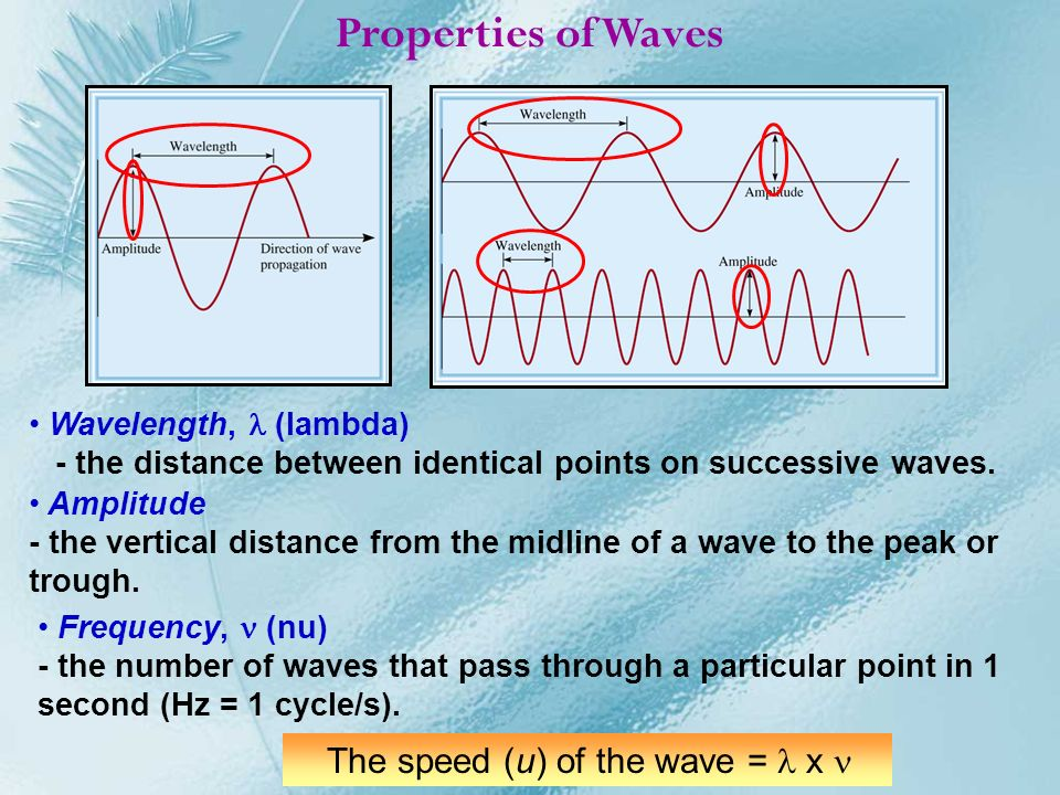 The speed (u) of the wave = l x n