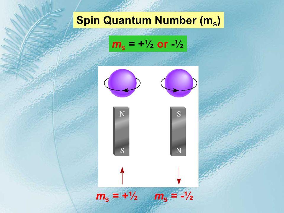 Spin Quantum Number (ms)