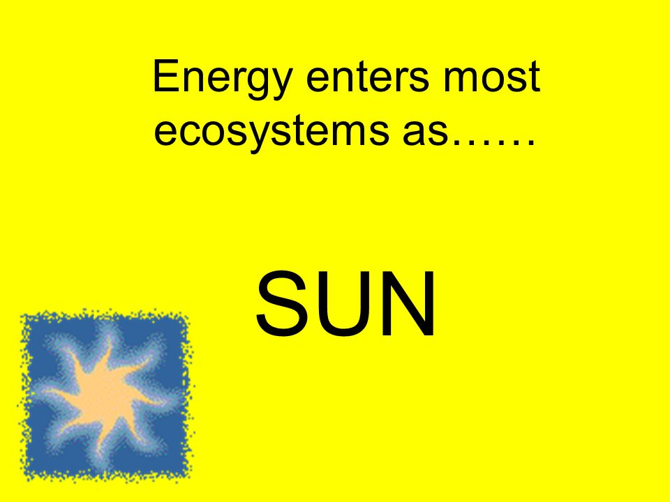 Energy enters most ecosystems as……