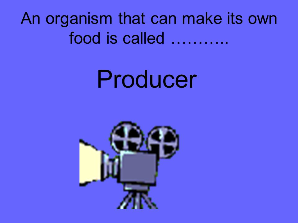 An organism that can make its own food is called ………..