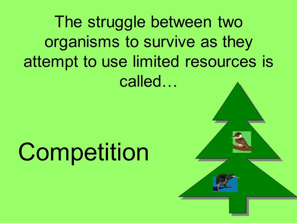 The struggle between two organisms to survive as they attempt to use limited resources is called…