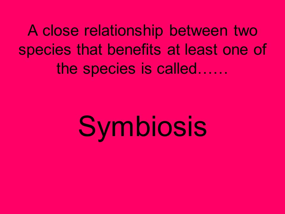 A close relationship between two species that benefits at least one of the species is called……