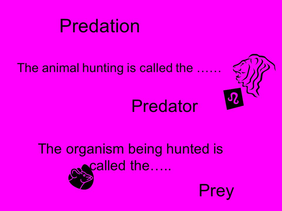The organism being hunted is called the…..