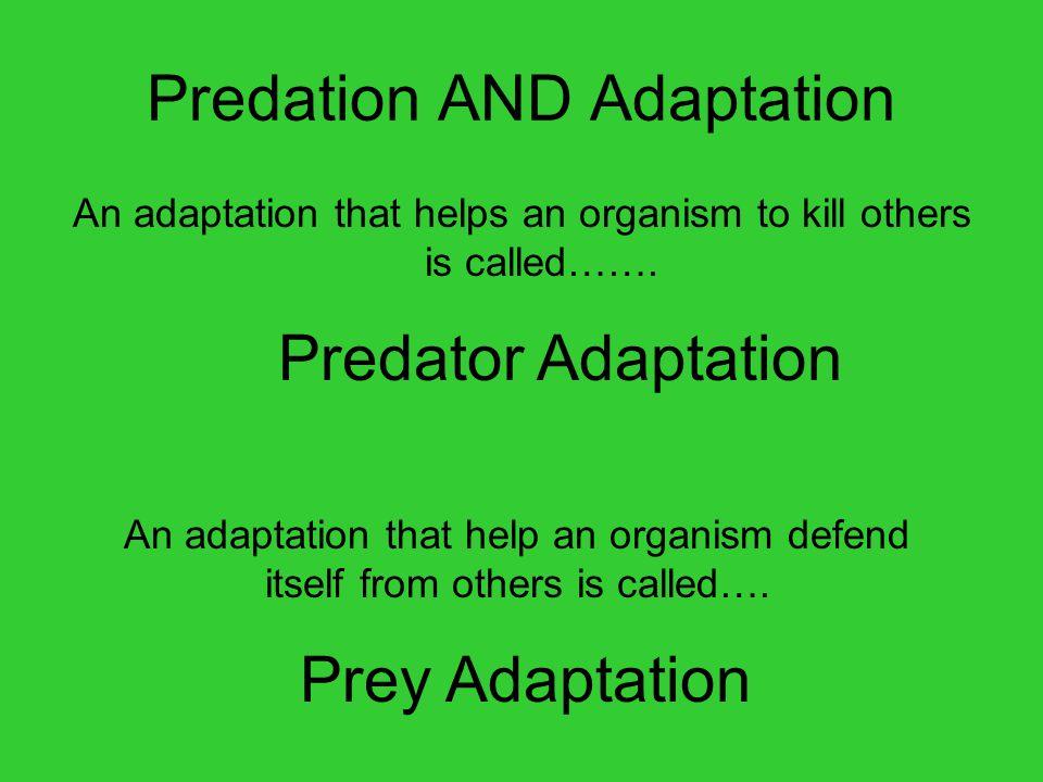 Predation AND Adaptation