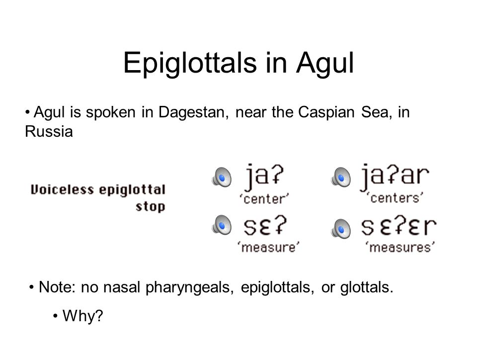 Epiglottals in Agul Agul is spoken in Dagestan, near the Caspian Sea, in Russia. Note: no nasal pharyngeals, epiglottals, or glottals.