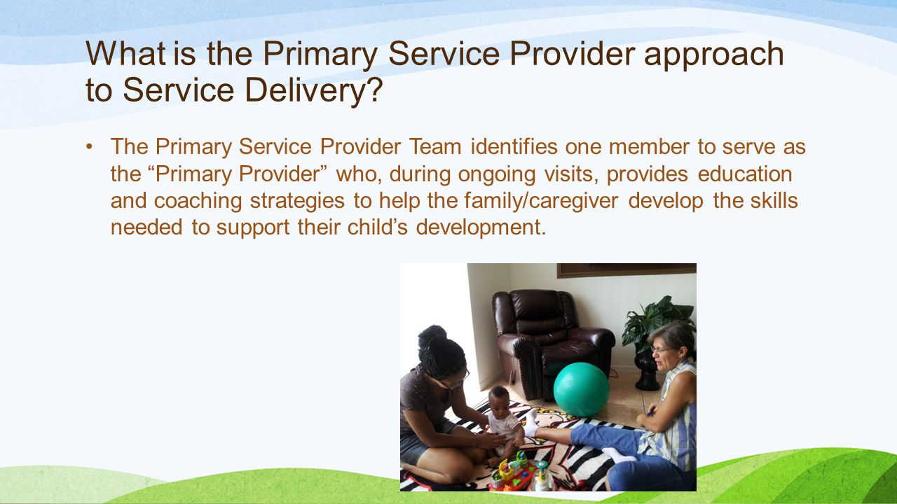 What is the Primary Service Provider approach to Service Delivery