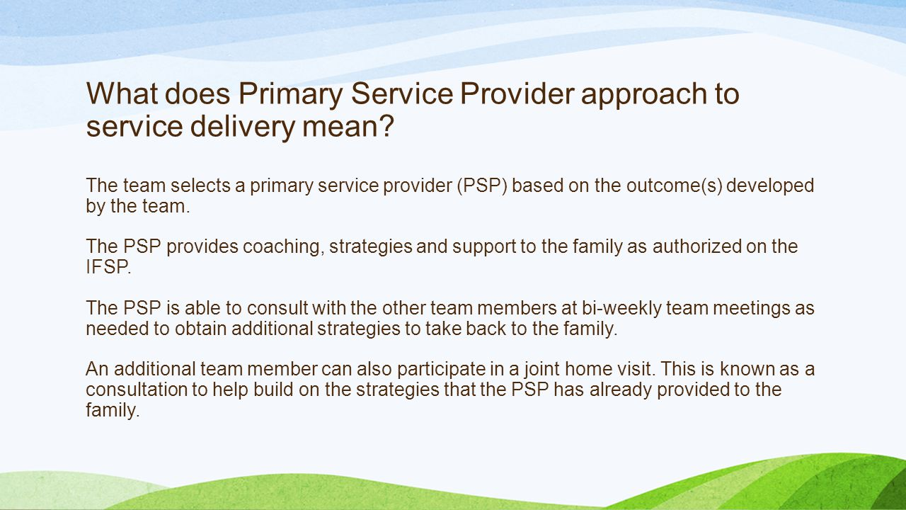 What does Primary Service Provider approach to service delivery mean