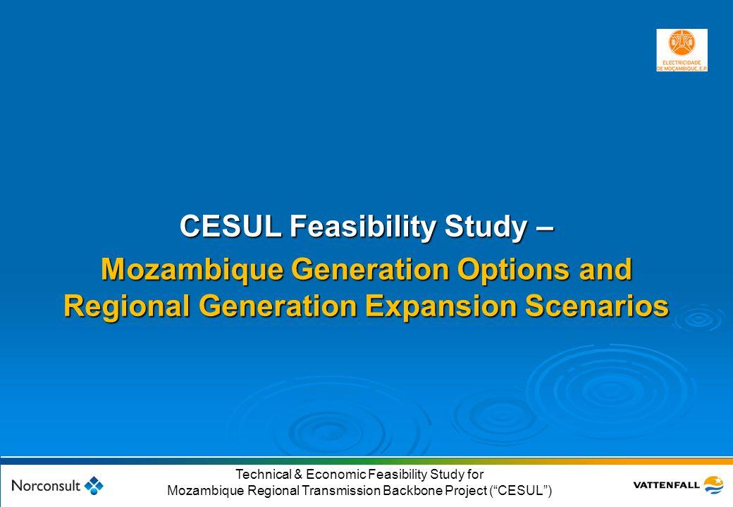 CESUL Feasibility Study –