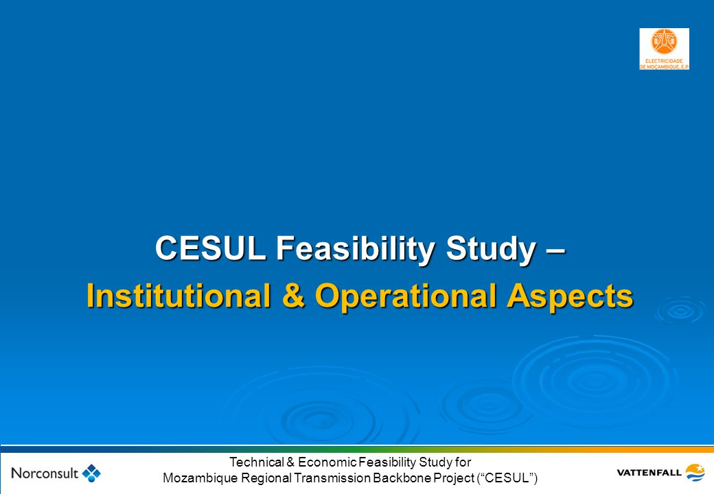 CESUL Feasibility Study – Institutional & Operational Aspects