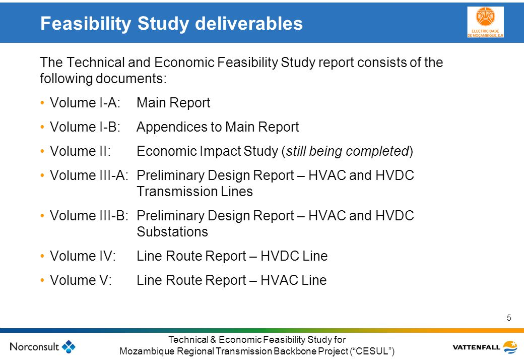 Feasibility Study deliverables