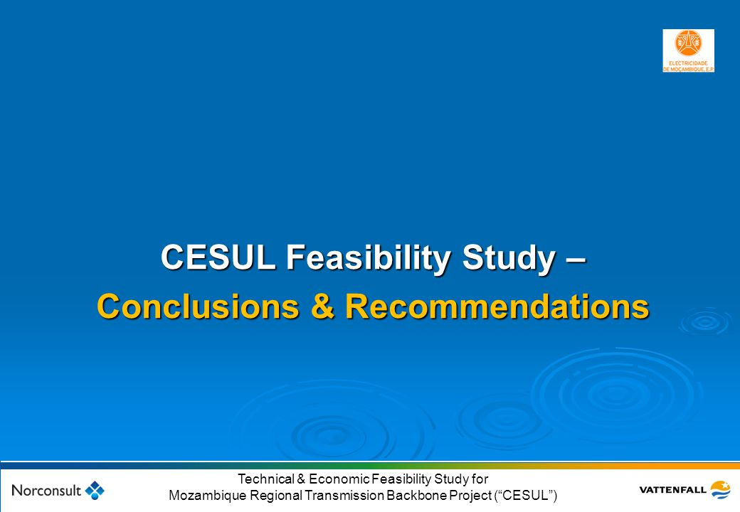 CESUL Feasibility Study – Conclusions & Recommendations
