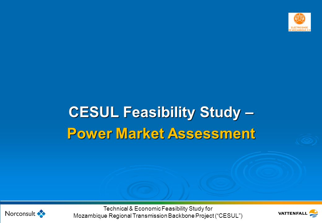 CESUL Feasibility Study – Power Market Assessment