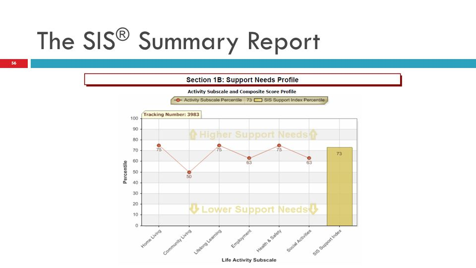 The SIS® Summary Report