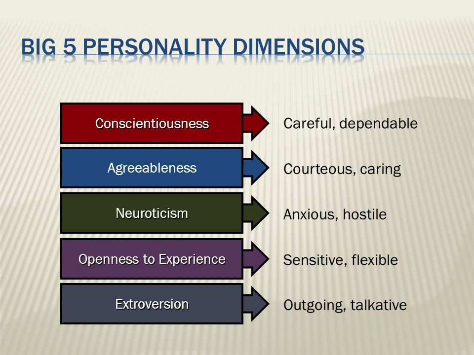 Big 5 personality dimensions