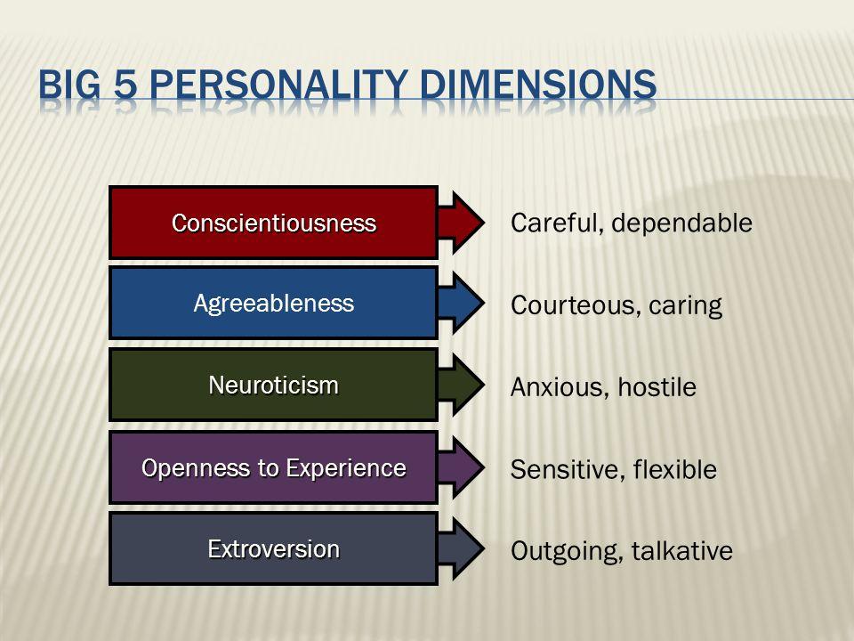 Big 5 personality dimensions