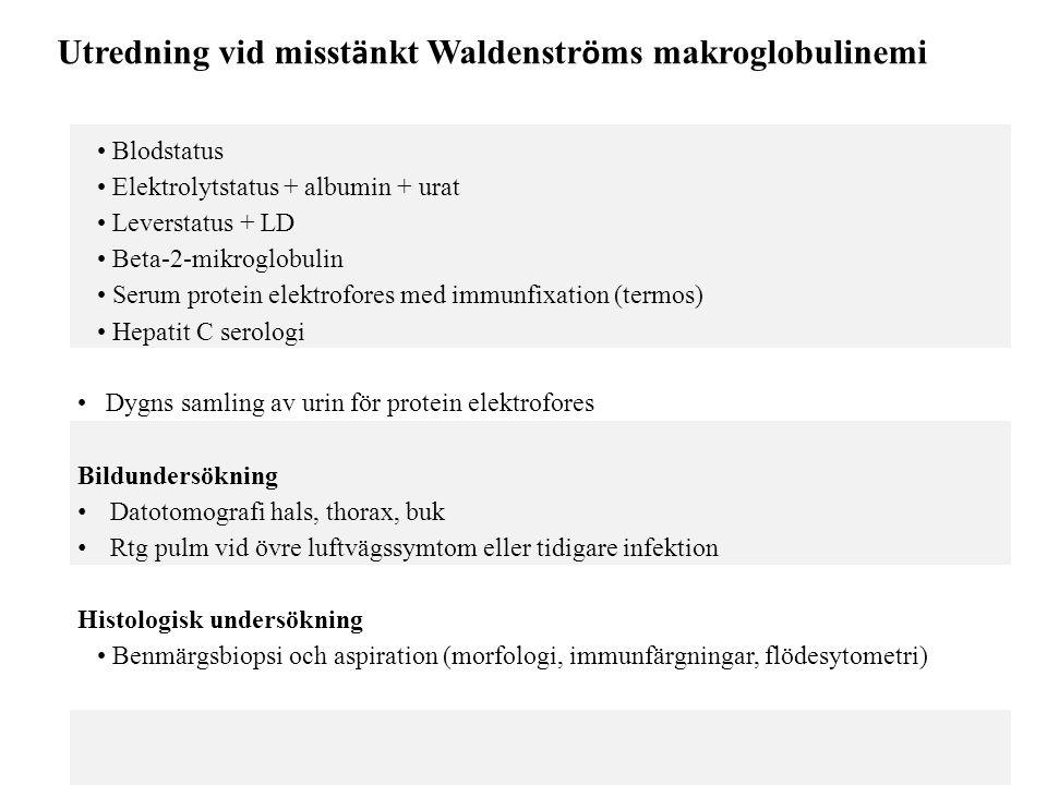 Utredning vid misstänkt Waldenströms makroglobulinemi