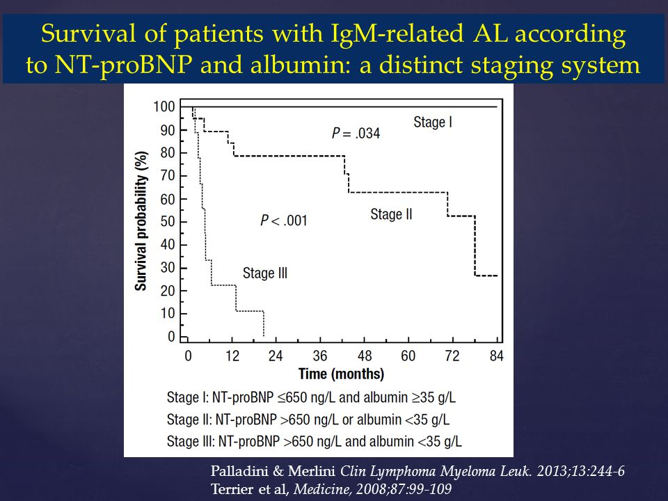 Survival of patients with IgM-related AL according