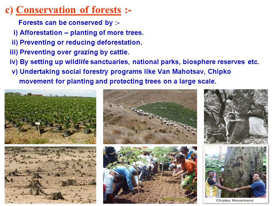 c) Conservation of forests :-