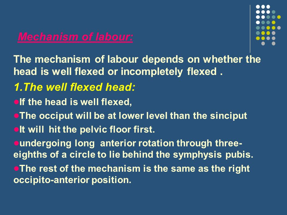 Mechanism of labour: 1.The well flexed head: