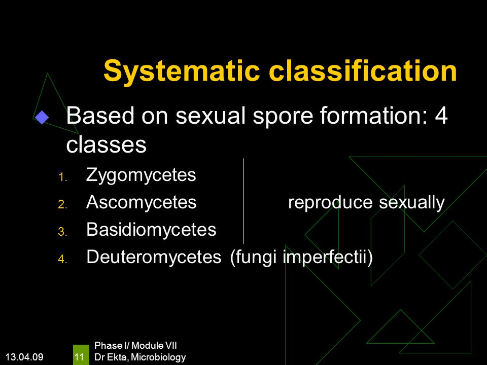 Systematic classification