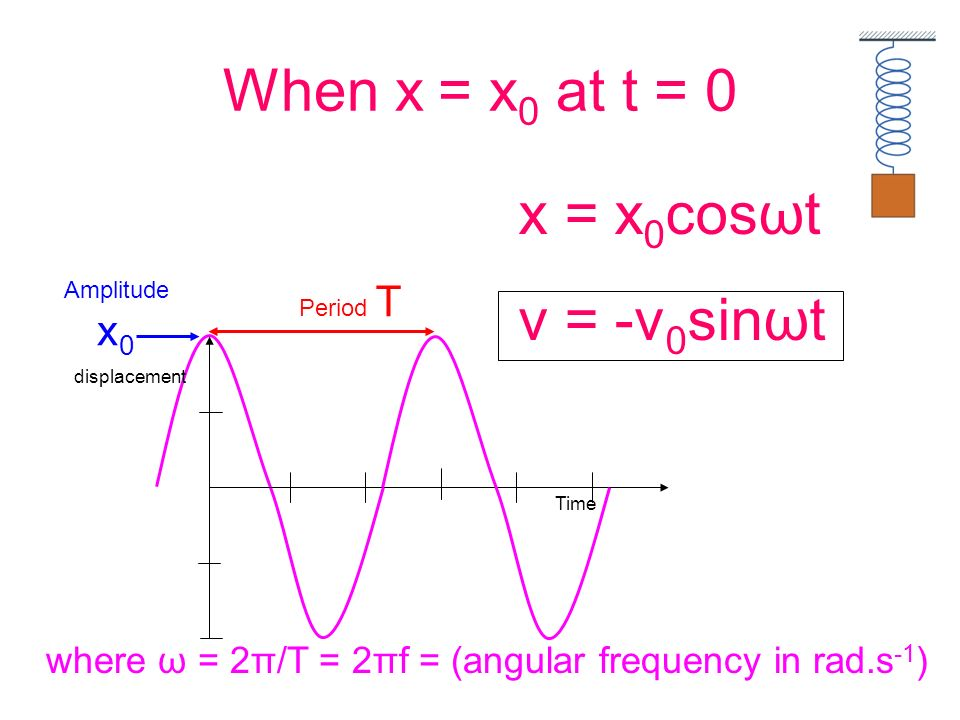 When x = x0 at t = 0 x = x0cosωt v = -v0sinωt