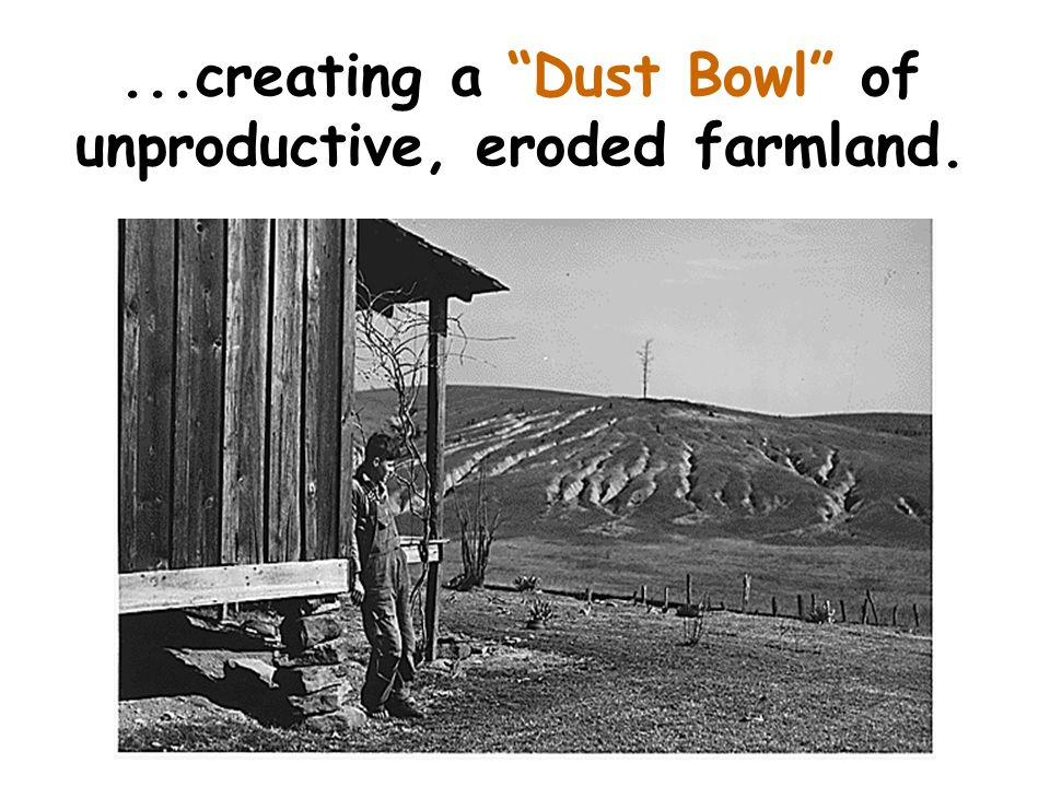 ...creating a Dust Bowl of unproductive, eroded farmland.