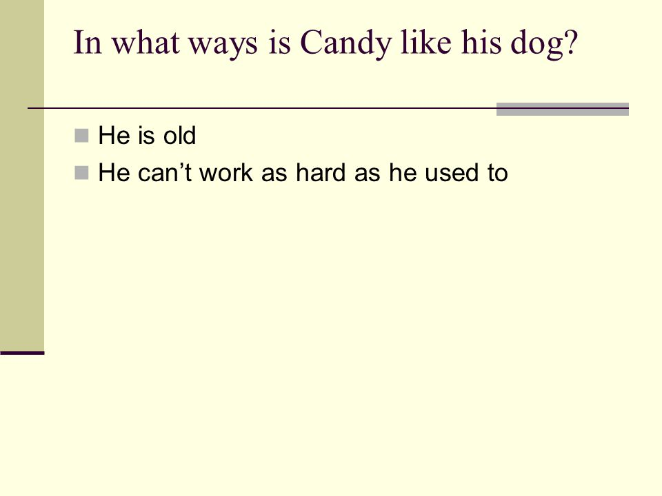 In what ways is Candy like his dog