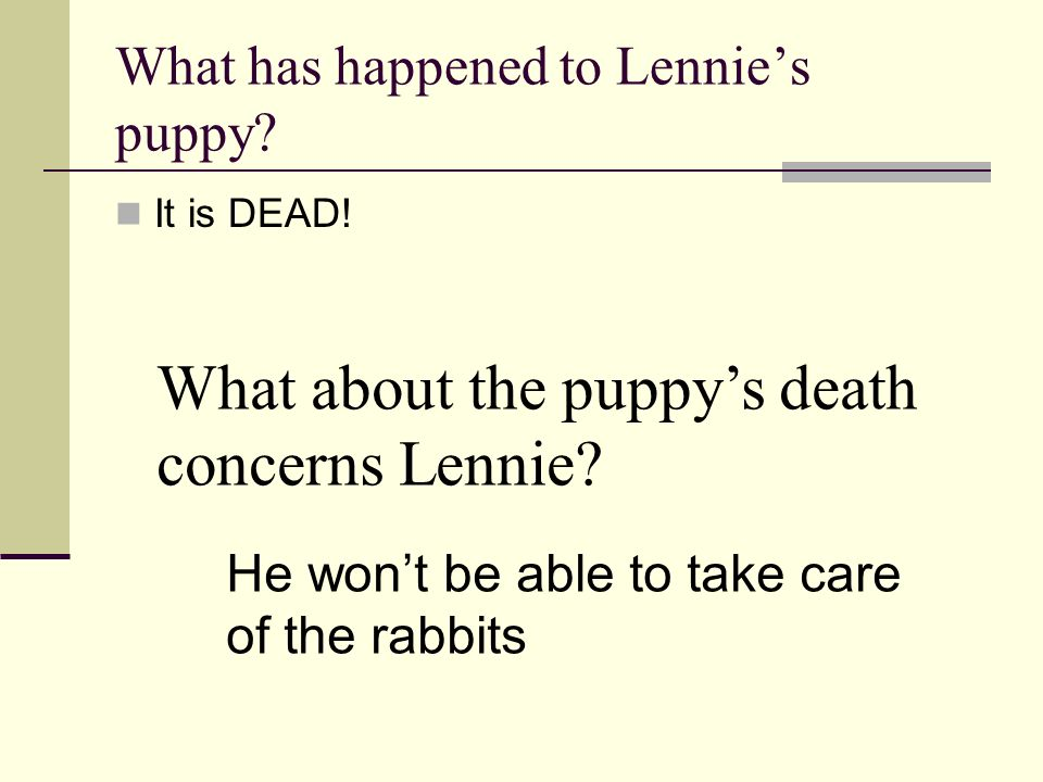 What has happened to Lennie's puppy
